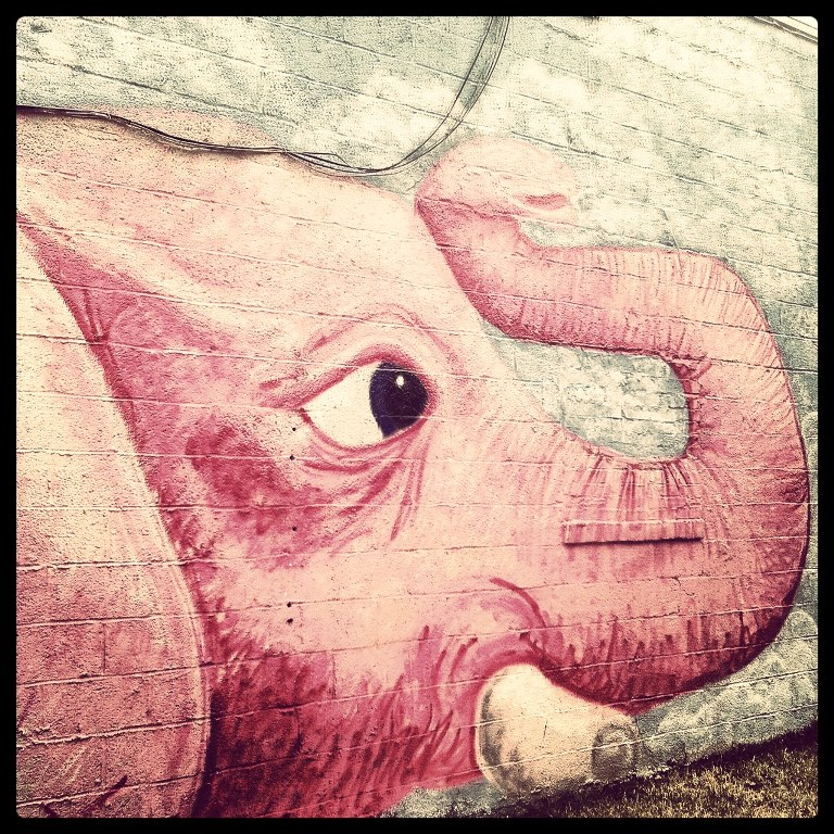Art in Park Circle - Pink Elephant