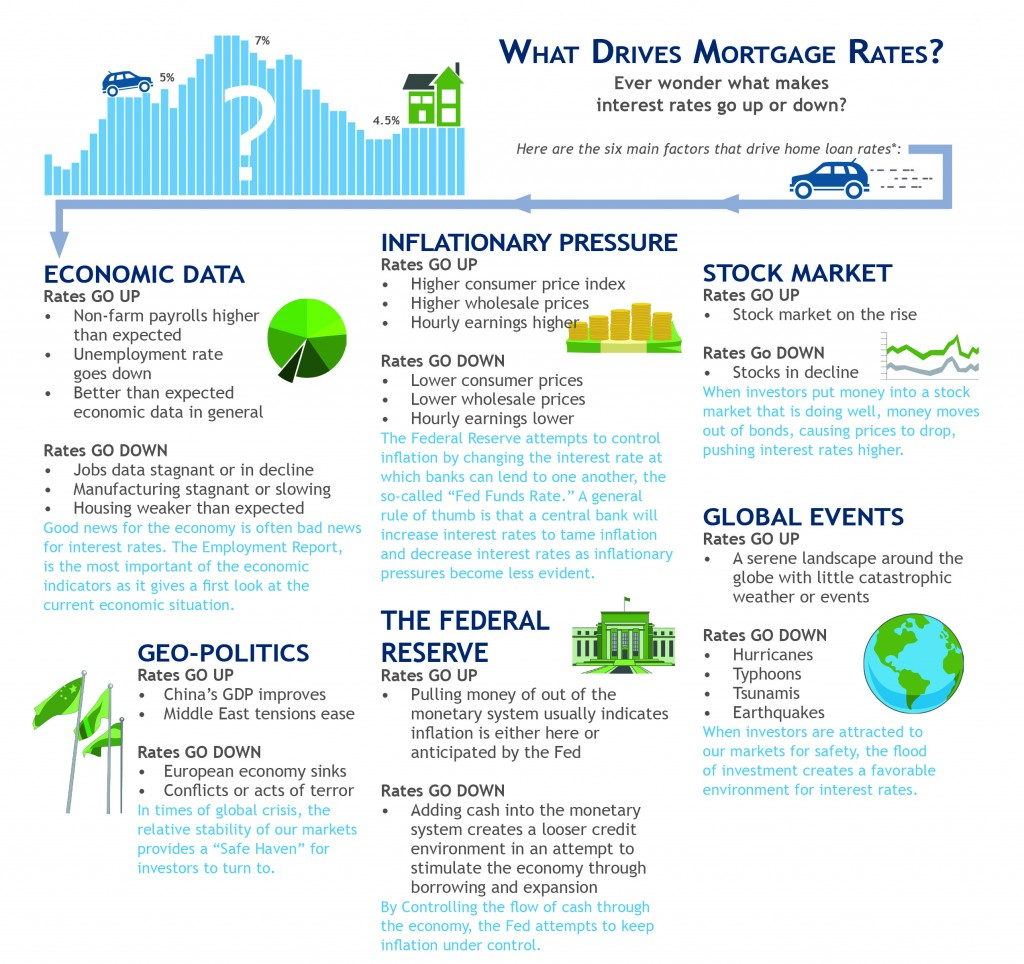 What Drives Interest Rates?