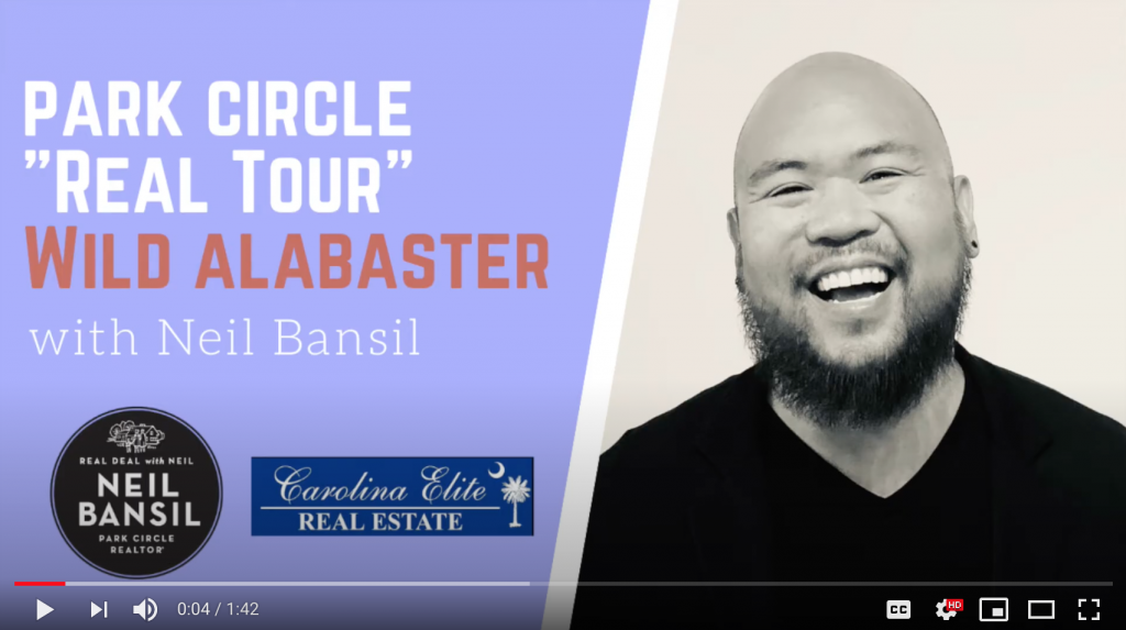 "Park Circle ""Real Tour"" - Wild | Alabaster"