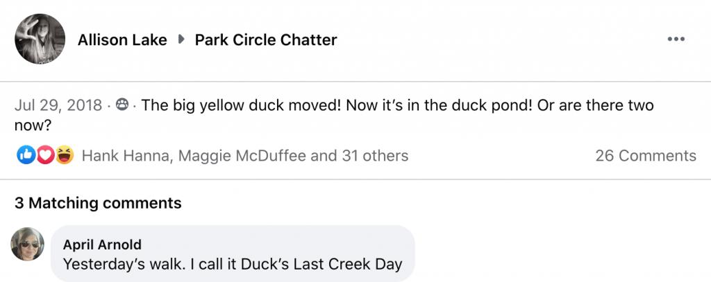03 - Park Circle Duck - Confusion - July 29 2018 - Allison Lake