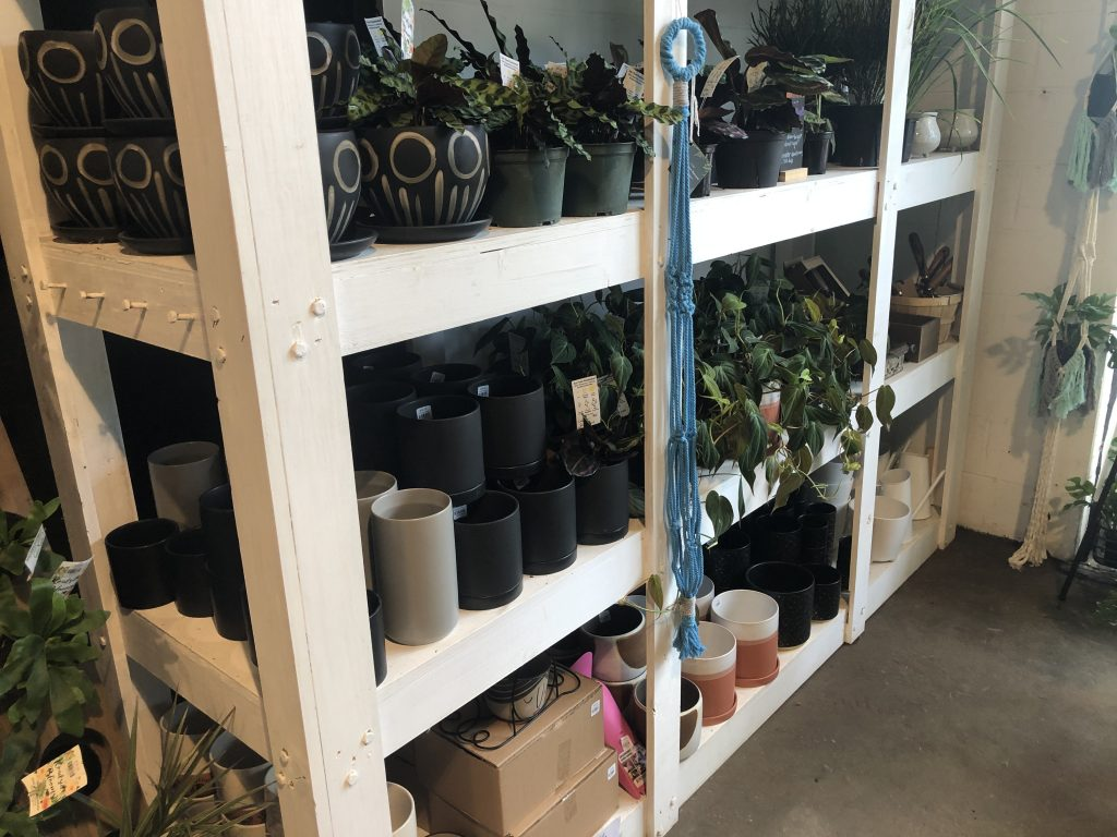 Roadside Blooms - More than just a Flower Shop - Plants - Real Deal with Neil